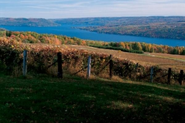 Keuka Lake in Fall