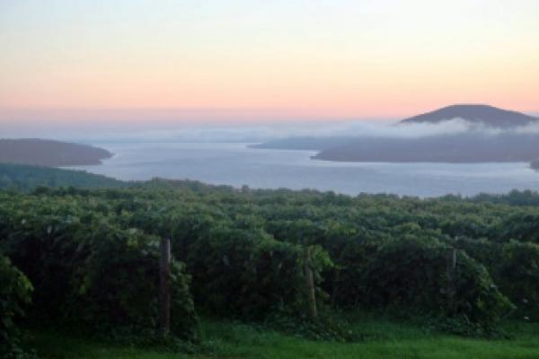 Scenic view of Canandaigua Lake surrounded by vineyards of the Canandaigua Wine Trail.