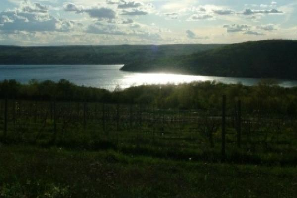 keuka lake in sunshine