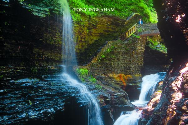 a walk through watkins glen state park video and book