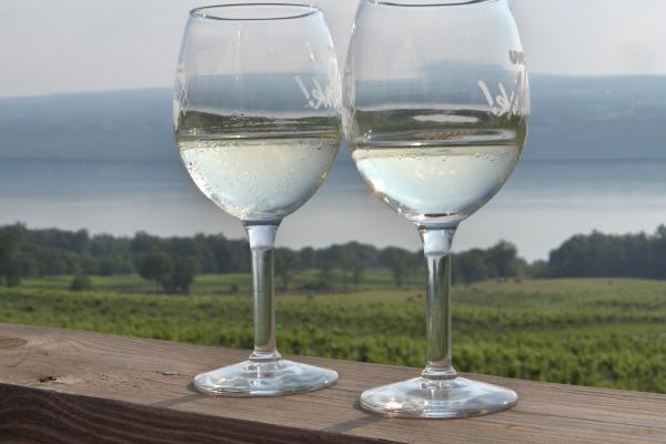 Beautiful views and wine tastings along Seneca Lake Wine Trail.