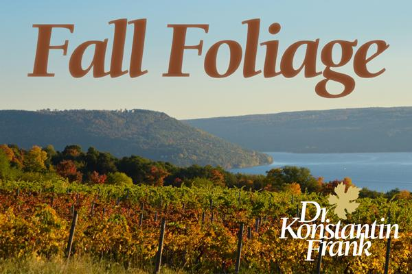fall foliage orange text in sky with grapevines below text in brown and orange fall hues overlooking the water of keuka lake