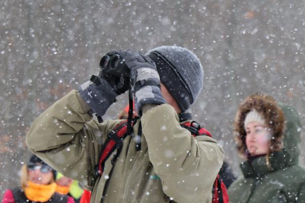Winter Snowshoeing with the Montezuma Audubon Center
