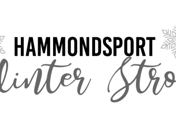 Hammondsport Winter Stroll
