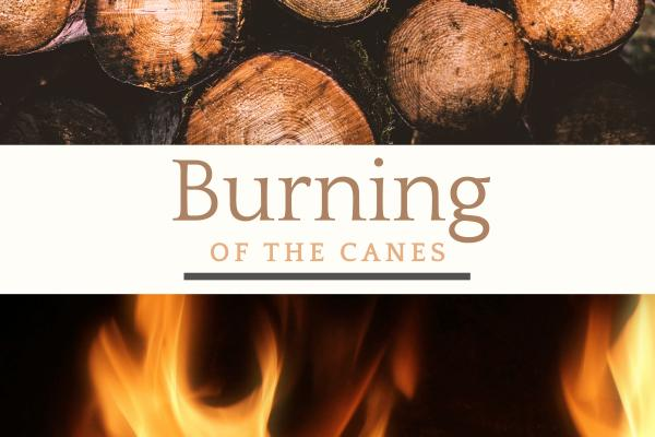 Burning of the Canes