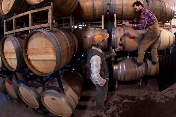 winemaker climbing on wine barrels pouring sample from barrel into wineglass for man standing on the floor