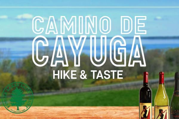 Toro Run Camino De Cayuga