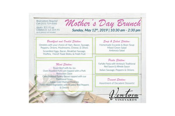 brunch menu text with options in blue text, mothers day brunch header in pink text