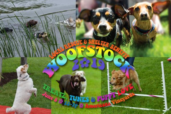 Woofstock 2019, June 8, 12-7p at Americana Vineyards Winery