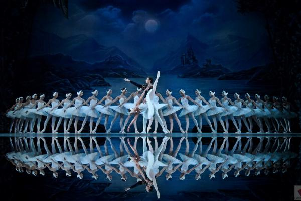 National ballet Theatre of Odessa Swan Lake Logo