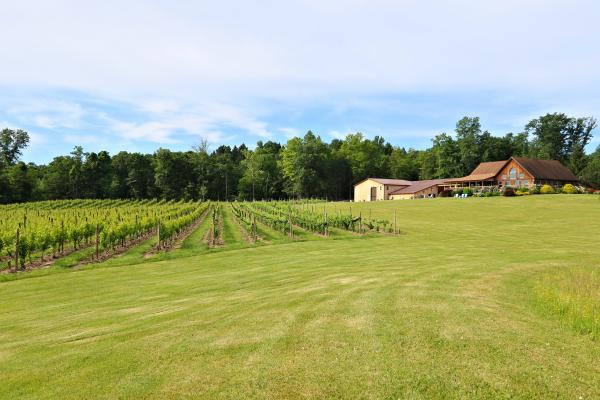 Buttonwood Grove Tasting Room and Vineyards