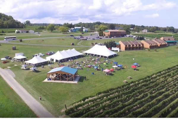 Aerial shot of the lawn at Glenora Wine Cellars, with tents and tables set up for our annual lobster dinner.