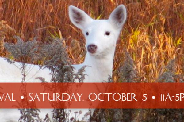 Fall Festival is Saturday, October 5, from 11a-5p, immediately following the Run With The Deer Races