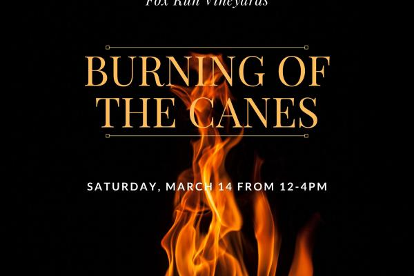 Fox Run's Burning of the Canes Event