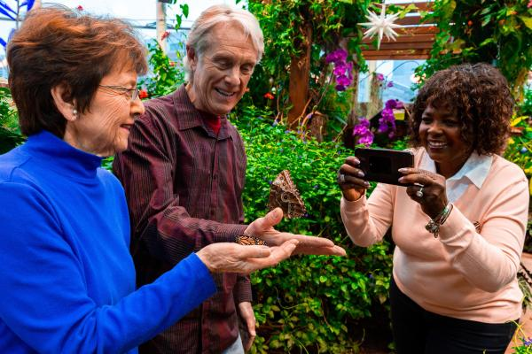 Museum Mondays for Seniors: Butterfly Garden Experience