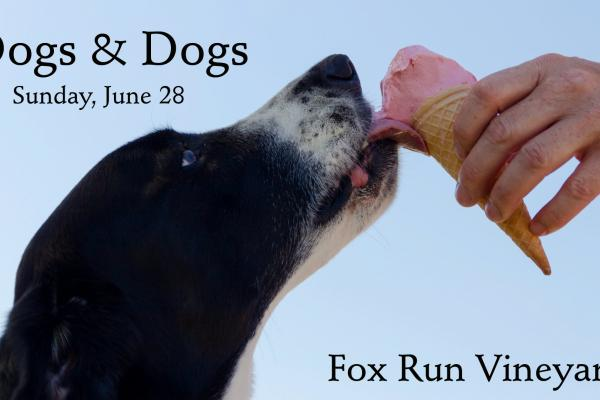 Dogs & Dogs event at Fox Run Vineyards