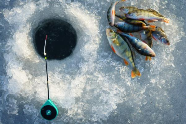 overhead shot of an ice fishing hole with rod and caught fish