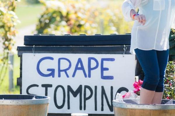 Woman stomping grapes