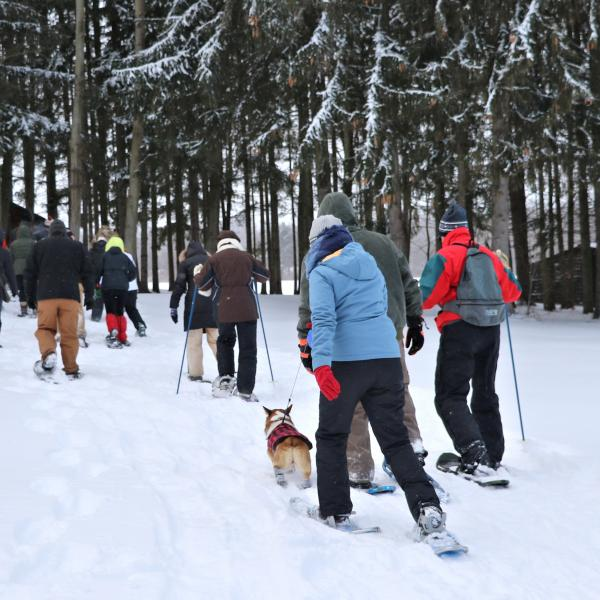 Winter Snowshoeing at Buttonwood Grove