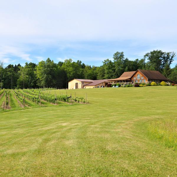 Buttonwood Grove tasting room